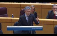 Landaluce acusa a Sánchez de provocar la mayor crisis migratoria de la democracia española