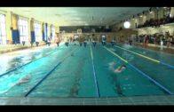 Málaga próxima cita para el natación Ciudad de Algeciras