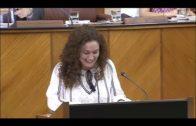 Adelante Andalucía lleva al parlamento la preocupación por la falta de profesor de fagot