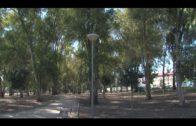 """El Ayuntamiento  construirá  una pista de parkour en el parque """"Pepe Gázquez"""""""
