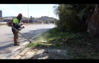 Limpieza realiza trabajos de desbroce en los accesos del Cortijo Real