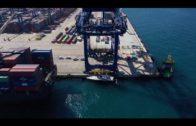 TTI Algeciras sigue consolidándose como operador de cargas especiales