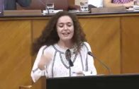 Adelante Andalucía acusa a la Junta de desmantelar el centro de menores del Cobre para privatizarlo