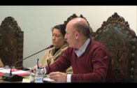 Cádiz elegirá a 723 concejales 11 más que en 2015 por entrada de San Martín San Martín del Tesorillo