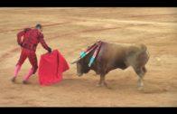 El jurado de los premios taurinos designa a David de Miranda triunfador de la Feria Real 2019