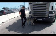 Interceptados 493 kilogramos de hachís, en un camión de andamios con destino a Algeciras