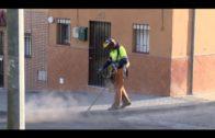 Algeciras figura entre las 36 obras de rehabilitación que la Junta reactivará en la provincia