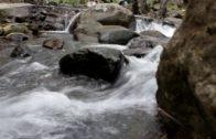 Ecologistas en Acción lameta el estado de los ríos de la comarca