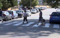 Muñoz y Ruiz supervisan los trabajos de repintado de los pasos de peatones de centros educativos