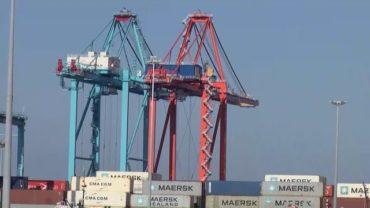 APM Terminals Algeciras confirma que la previsión de Maersk reducirá su tráfico un 30% en 2020