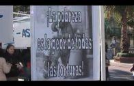 Muere un joven sin hogar en Algeciras
