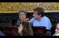 Adelante Algeciras presenta una Moción para mejorar el CEIP Campo de Gibraltar
