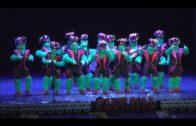 Ocho agrupaciones compiten en la final del concurso carnavalesco del Florida