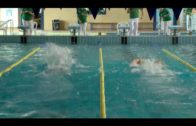 El CD Natación Ciudad de Algeciras al Campeonato Andalucía