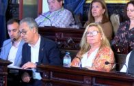 El Psoe de Algeciras traslada al gobierno local propuestas complementarias ante el COVID-19