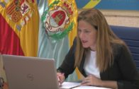 El Ayuntamiento ha celebrado 108 reuniones telemáticas desde el comienzo del estado de alarma