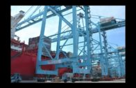 El contenedor de Hamburg Süd convertido en obra de arte recala en APM Terminals Algeciras
