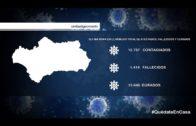 Incidencia de la COVID-19 en la comarca, provincia, Andalucía y España