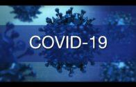 Los Senadores del PP consultan sobre las peticiones al Defensor del Pueblo sobre la COVID-19