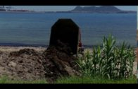Playas lleva a cabo una nueva actuación de limpieza en El Chinarral