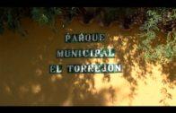 El Ayuntamiento de Algeciras acomete mejoras en el Parque del Torrejón