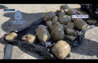 Detenido en el puerto por llevar presuntamente más de 21,5 kilos de hachís ocultos en un camión