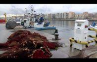 La Junta publica en enero una convocatoria de ayuda al sector pesquero afectado por el alga invasora