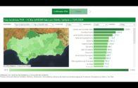 Licitado el estudio informativo de la electrificación del tramo ferroviario entre Bobadilla y Ronda