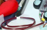 La provincia registra 132 donaciones de plasma hiperinmune para combatir el Covid-19