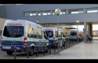 Andalucía suma hoy 77 fallecidos y 1.788 casos de coronavirus  1.200 menos que el miércoles pasado