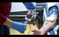 Hoy, donación de sangre en el centro de salud del Saladillo de 17.30h a 21.30h