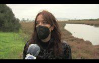 Verdemar denunciado un vertido de neumáticos en el río Palmones