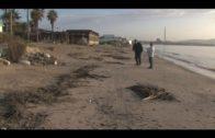 El Ayuntamiento retira los deshechos arrastrados por el temporal a las playas