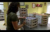 VOX  recuerda su propuesta de duplicar la cantidad municipal que se aporta al comedor Padre Cruceyra