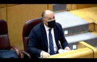 Landaluce pide al Defensor que se interese por la vacunación de portuarios y Salvamento Marítimo
