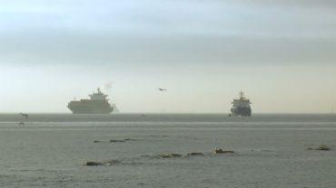 Fallece el tripulante de un barco en un accidente en la Bahía de Algeciras tras caer el mar