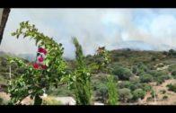 Algeciras, en riesgo alto por incendios forestales