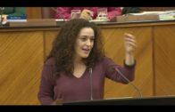 Nieto pide descentralizar  las oposiciones del personal docente en el Campo de Gibraltar