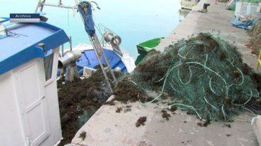 La Junta resuelve las primeras 72 subvenciones a los pescadores afectados por el alga asiática