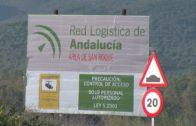 Marifrán Carazo anuncia para octubre el inicio de la 2ª fase del Área Logística Bahía de Algeciras