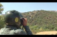 El SEPRONA de Algeciras emite balance de actuaciones por delitos contra ordenación del territorio