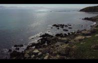 Se limita la navegación de veleros de 15m de eslora entre el cabo de Trafalgar y Barbate
