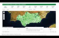 Sigue bajando la incidencia de la covid-19 en el Campo de Gibraltar